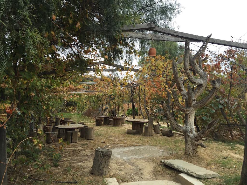 Aus dem Valle de Conception stammt der hiesige Wein, da lässt es sich gut feiern!