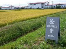 北海道東川町のおいしいドーナツ屋、&DONUT アンドドーナツは全粒粉、豆腐、豆乳、三温糖、ココナッツオイル、新鮮素材を使用。トランス脂肪酸フリーで揚げ、甘さ控えめで体にやさしい。どなたでも安心して召し上がれます。