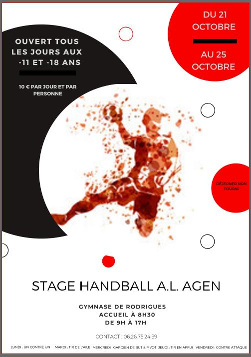 Ouvert tous les jours pour toutes les catégories jeunes !! Profitez en pour parfaire votre handball !!