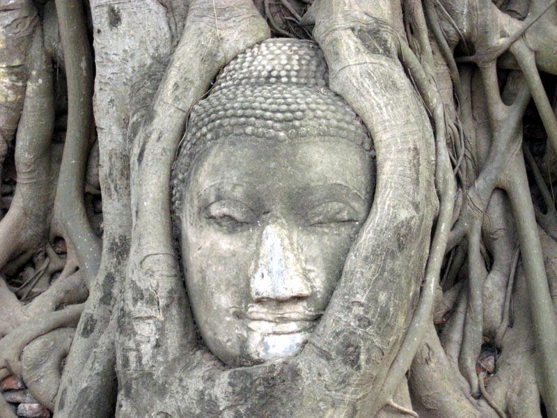 Seminarerlebnisse Die Seele Thailands