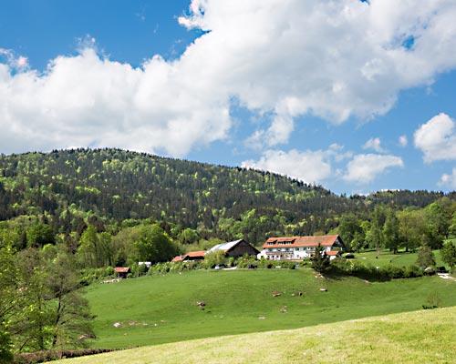 Wildberghof Buchet im Bayerischen Wald