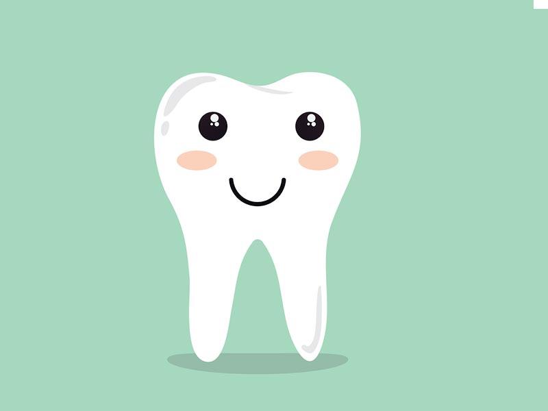 Erfahrungsbericht Baj Pendel Zähne