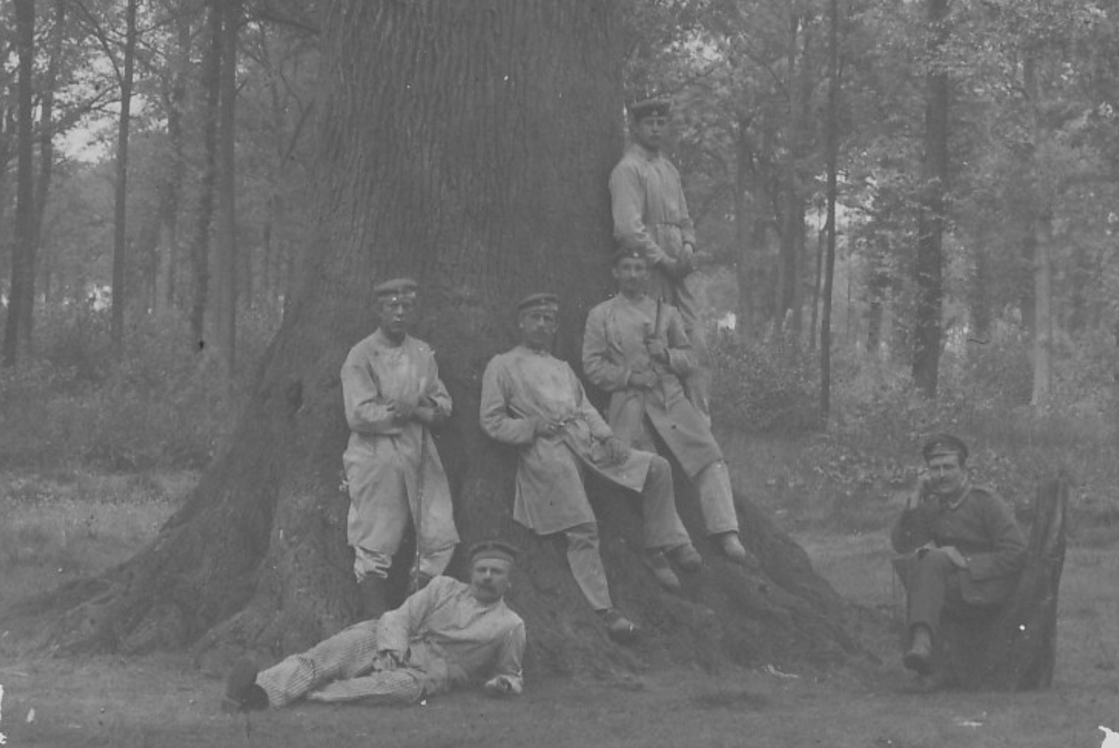 Heinrich Linnenfelser, rechts oben