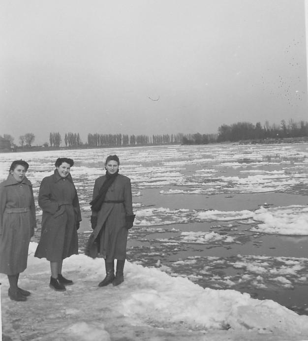 Treibeis im Rhein