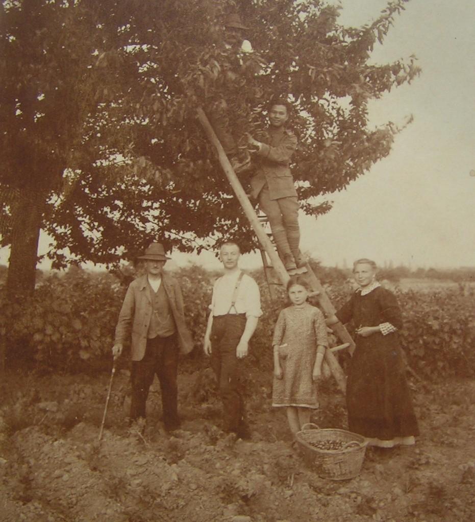 Siamesischer Soldat als Erntehelfer bei Familie Moor