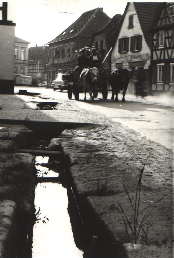 Hauptstraße mit Dorfbach