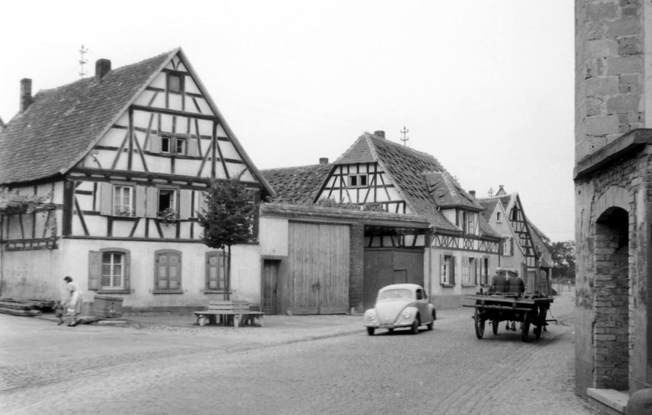 Böhlgasse , 1955