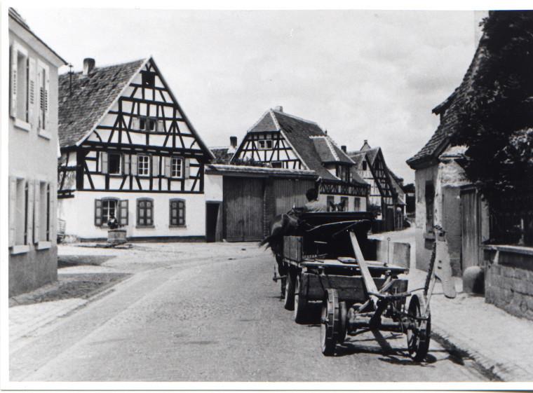 Böhlgasse, 1950 Fahrzeug mit Mähmaschine