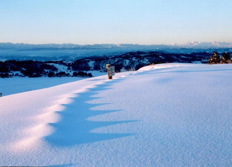 .山本山雪面