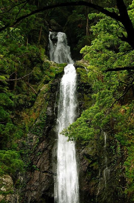 ニコニコ滝:二段のストレートな滝です。