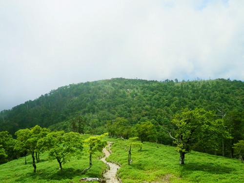 頂上から眺める丘は