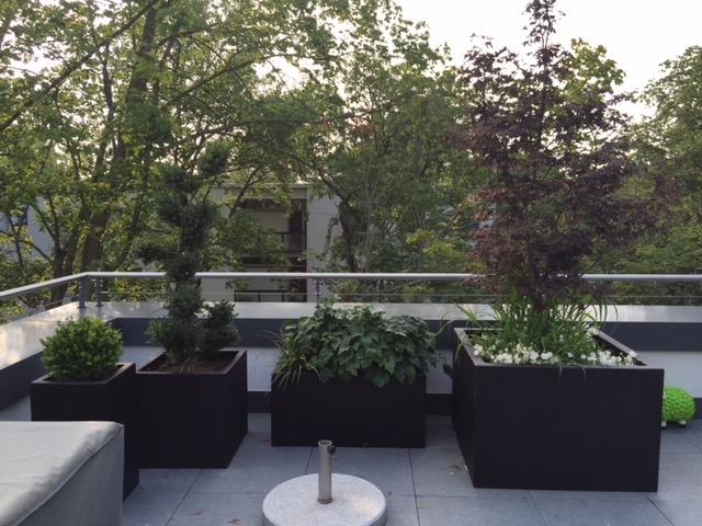 Dachterrassengarten 3