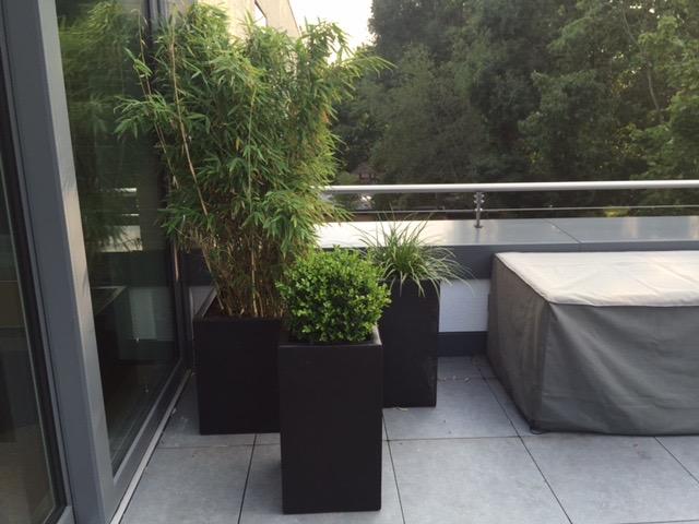 Dachterrassengarten 2
