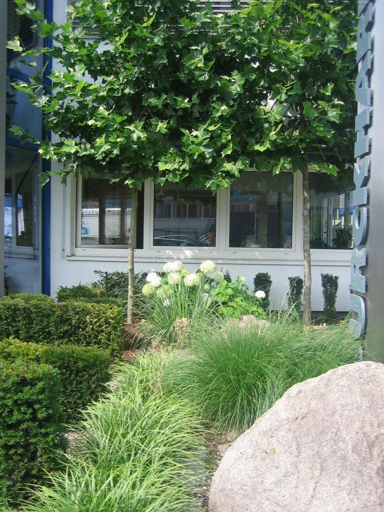 Gewerblicher Garten 5