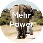 Elefant auf Strasse nach Auto - Kraft © Bethel Fath