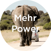 Elefant nach Auto - Power © Bethel Fath