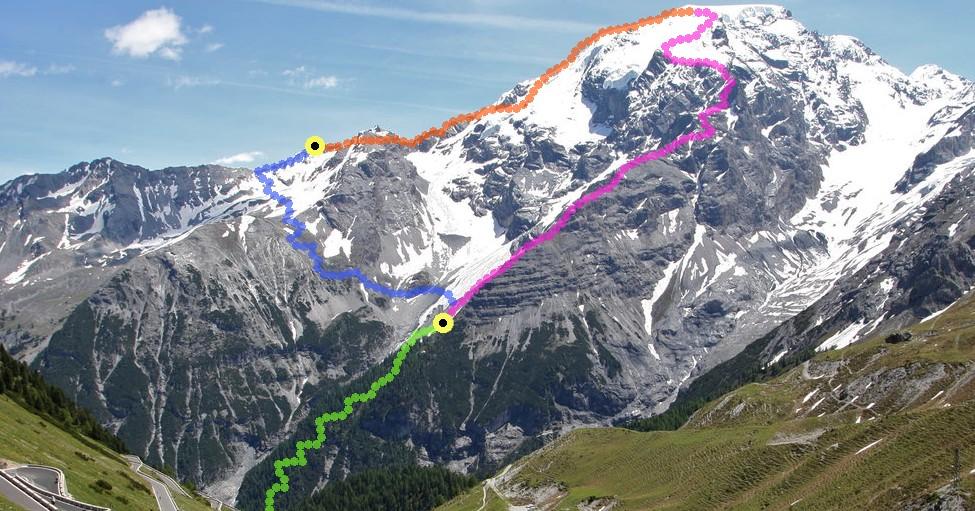 Ortler 3905m über Pleishorngrat