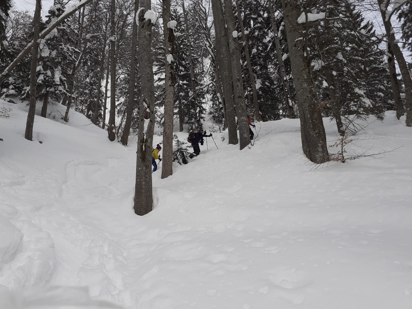 Skitour Hörndlwand und Gurnwandkopf