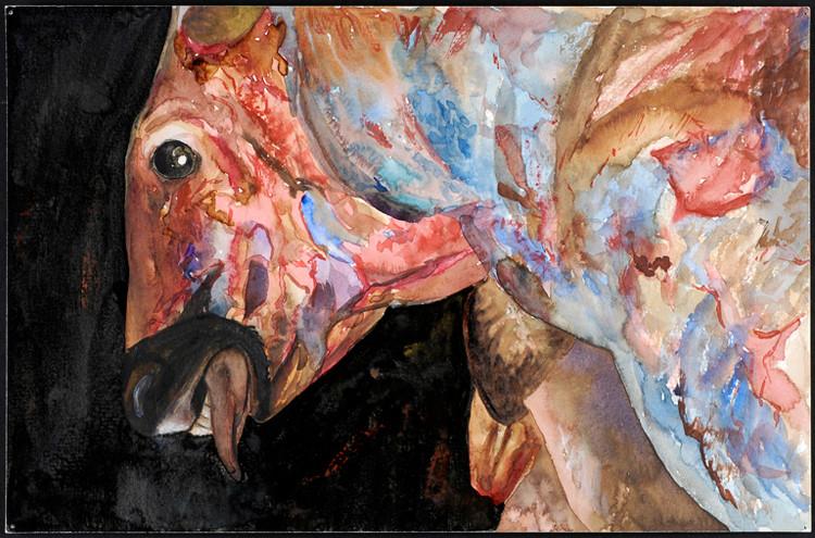 Toro desollado 2007, acuarela y tinta 23X35.5 cm