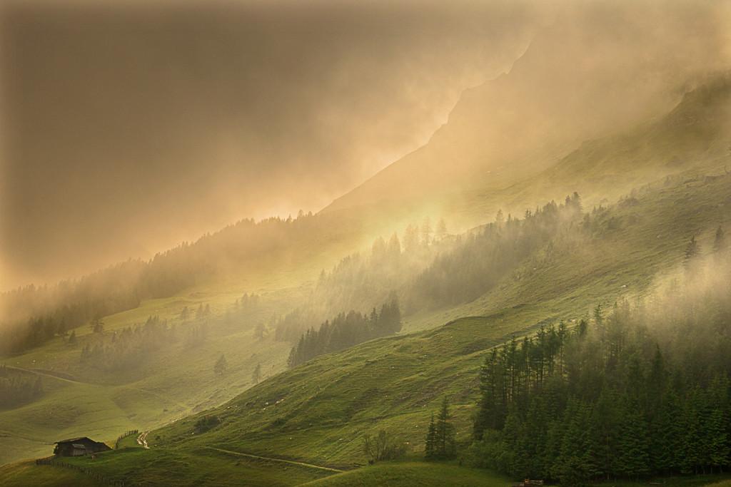 Nebelstimmung nach einem Regenguss