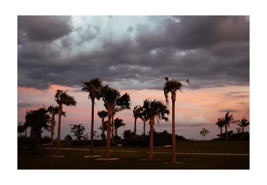 Sunset at picnic area on Sanibel Island Causeway