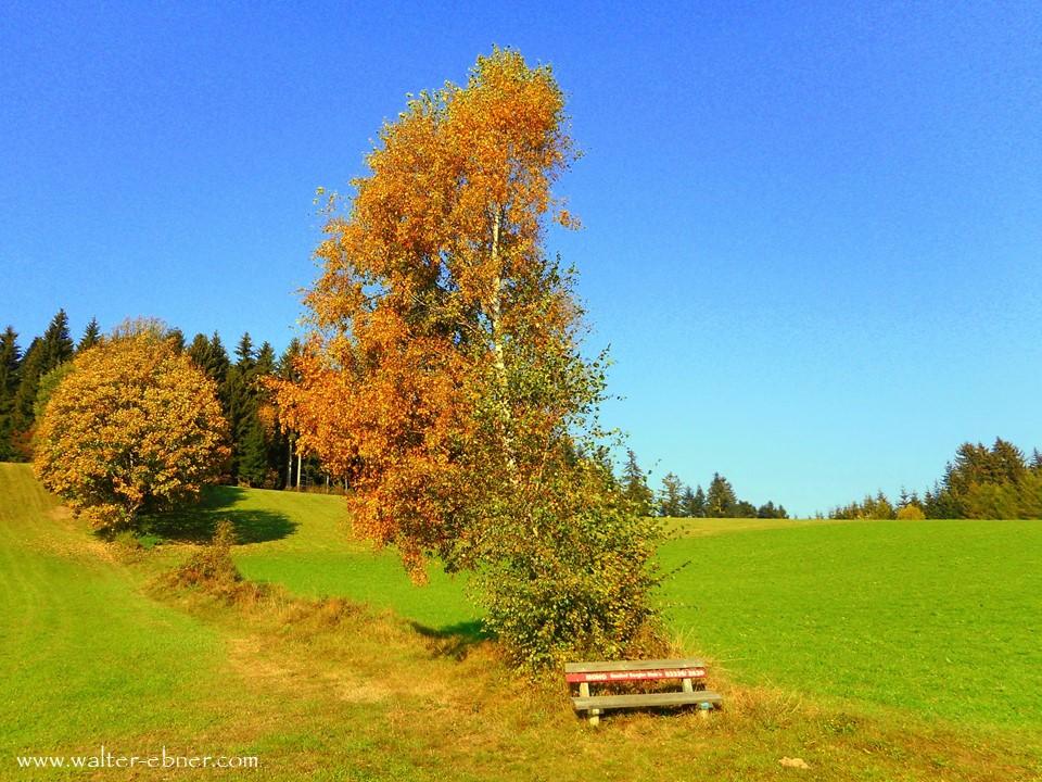 14.10.2018 - Herbst im Joglland
