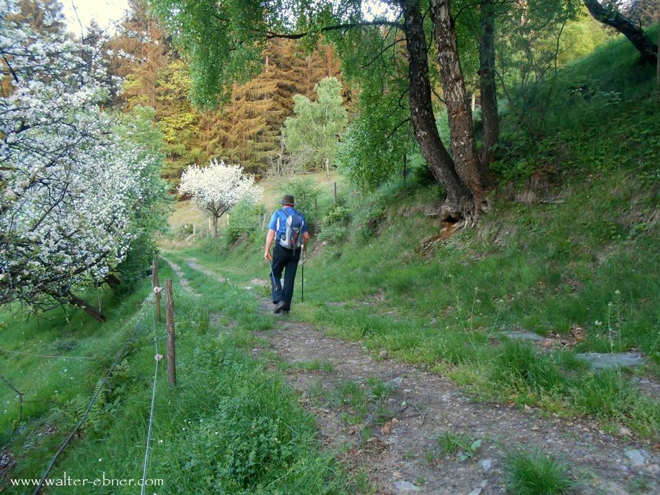 07.05.2018 - am Weg ins Burgenland