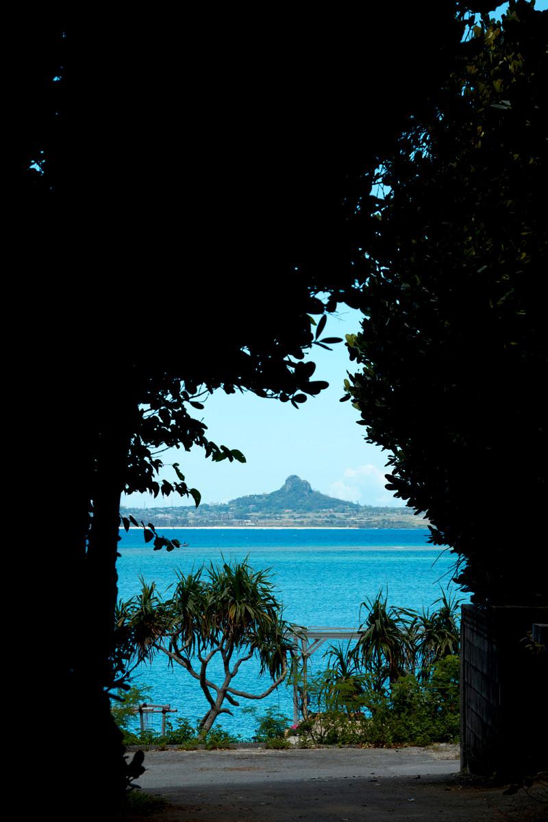 沖縄写真 備瀬のフクギ並木と伊江島