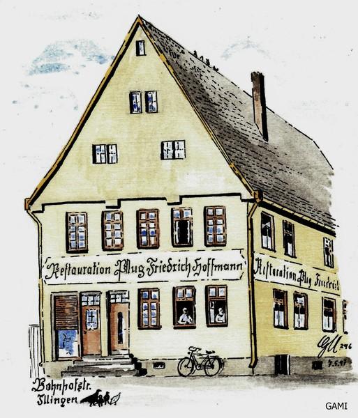 Pflug    (Friedrich Hoffmann)
