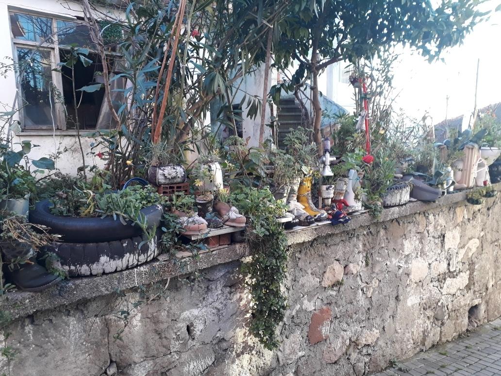 Urban recycling gardening ;)
