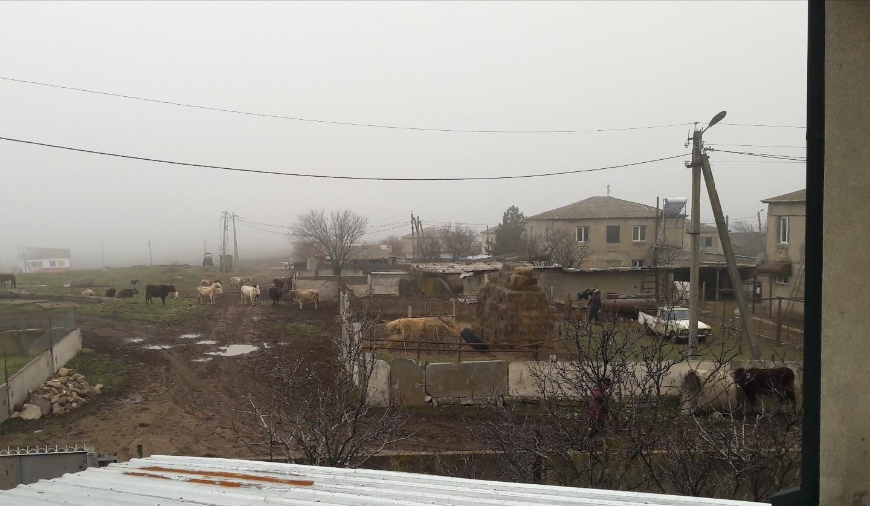 Udabno bei unserer Ankunft im Nebel