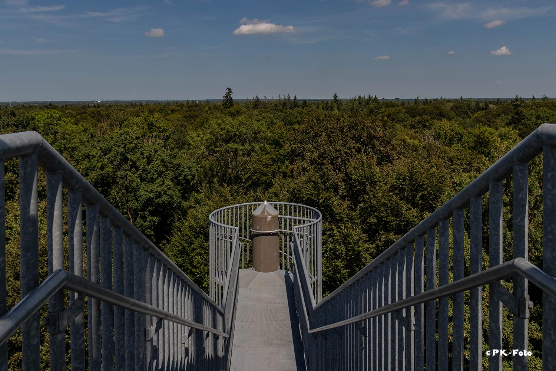 Blick vom Turm des Klosters Ihlow (~ 35 m)