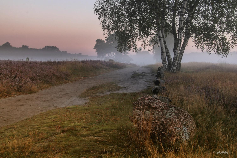 Westruper Heide bei Haltern