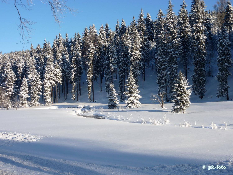 Nähe Altenberg im Erzgebirge