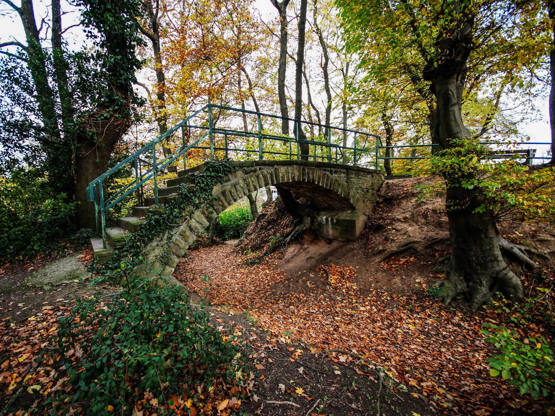 Brücke im Gemeindewald Hattingen-Blankenstein