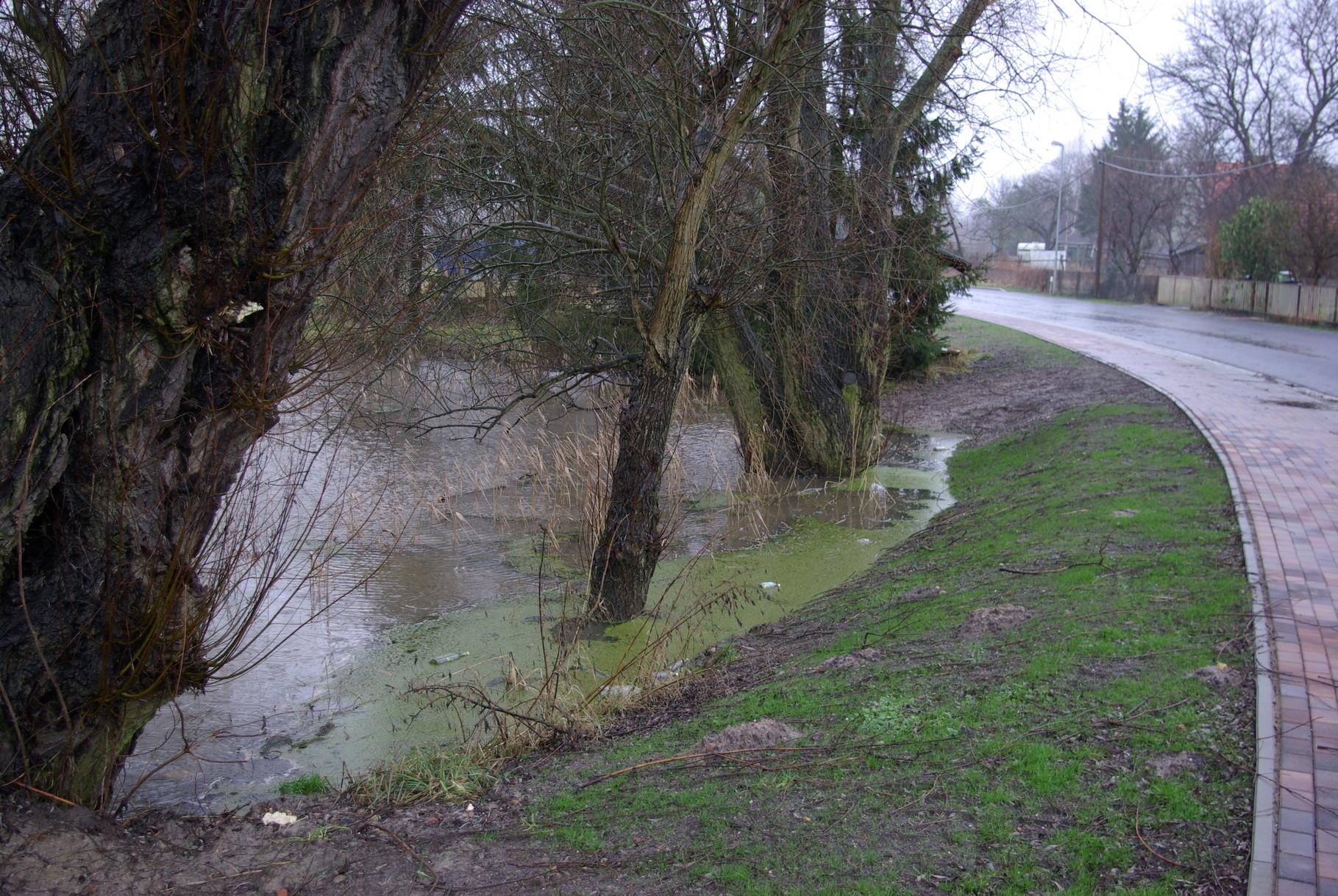 Teich am Mühlenberg