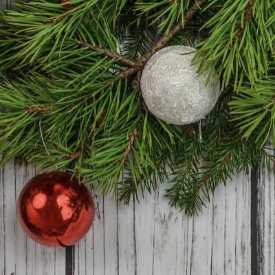 MUS-E®ikalischer Weihnachtsgruß