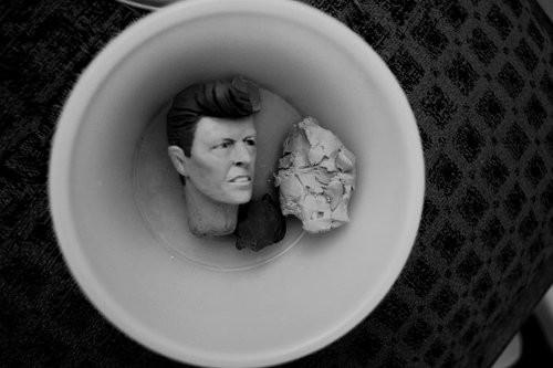 Knetfigurengebrauchshinweis:  Einen David Bowie aus Knete sollte man immer sorgfältig eintuppern, sodass er nicht dreckig wird, vorallem wenn er noch nicht auf eigenen Beinen stehen kann.