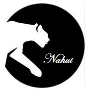 NAHUI Consultoría y Capacitación Empresarial clic para conocer más