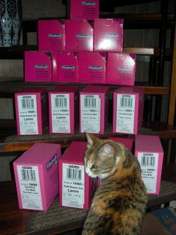 Stimme der Tiere eV für Schlupfwinkel Moldawien