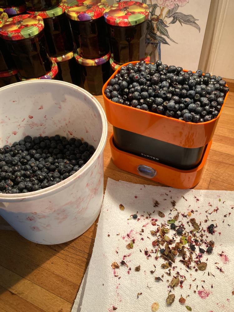 Von der Beere zur Marmelade