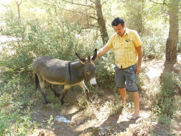 Tierfreunde Antalya