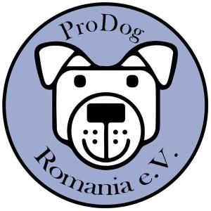 2 Kastrationen im Tierheim BUCOV in Ploiesti, Rumänien