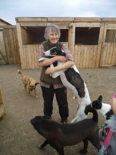 Svetlana und ihre Tiere