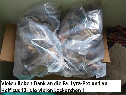 Not-Hund, Beselich für Polen