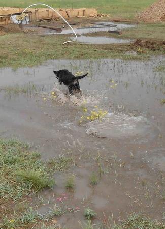 ...und Wasser wurde gefunden!