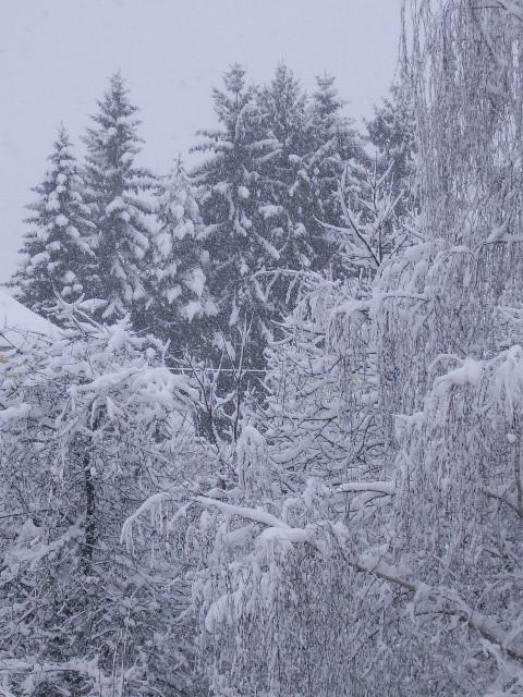 Schneefall vor unserer Tür