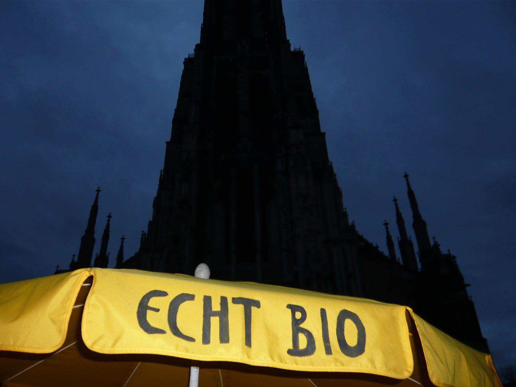 Morgendämmerung am Ulmer Münster