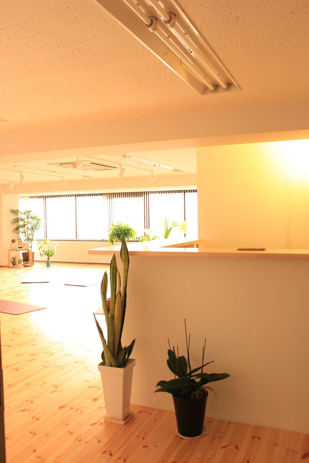 ドアを開けると、オフィスビルとは180°雰囲気の違う 「静かな空間」 がひろがります。