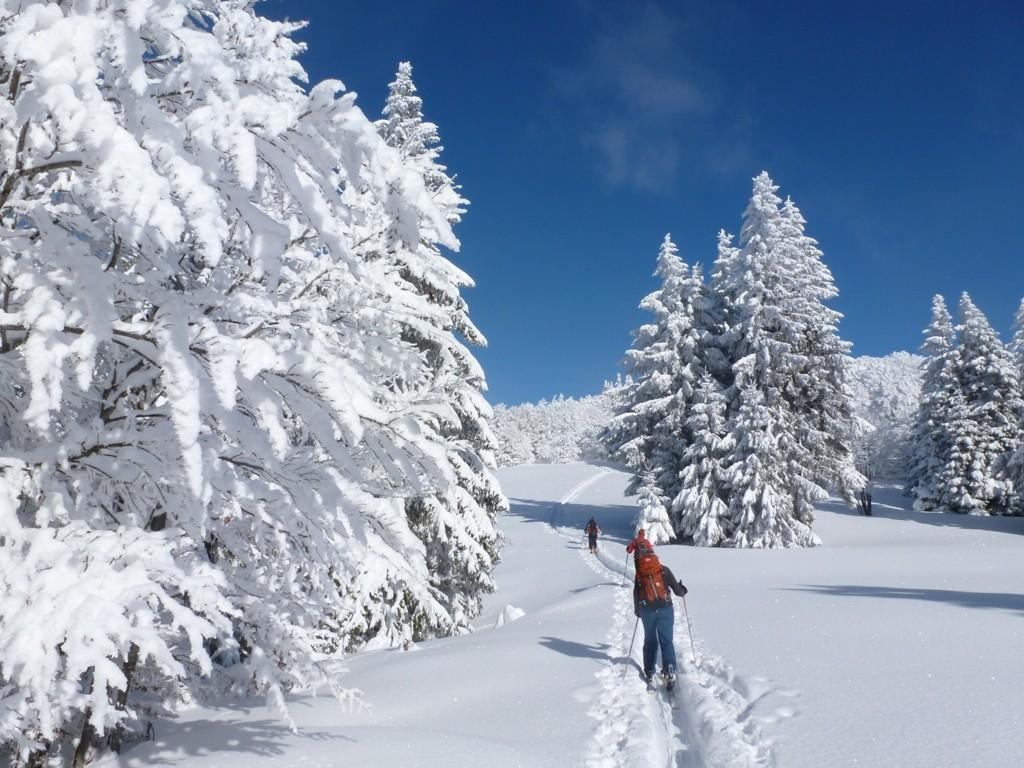 ski de randonnée au Grand Ballon